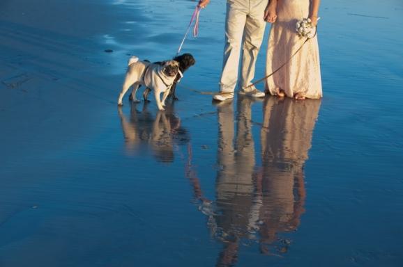 Francine & Roberto - Dog Beach - Coronado