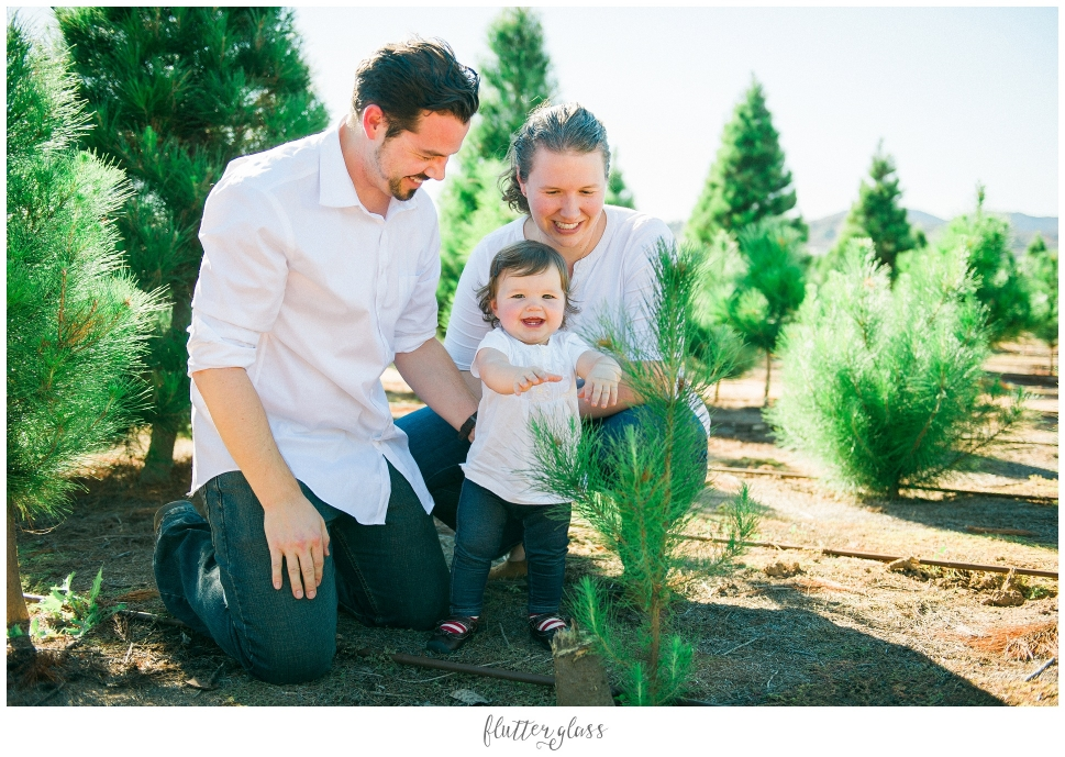 Family Christmas Tree Farm San Diego Holiday Photography